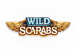 Play Wild Scarabs bitcoin slot for free
