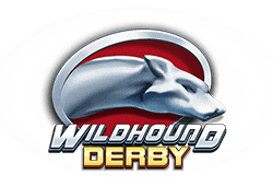 Play'n GO Wildhound Derby logo